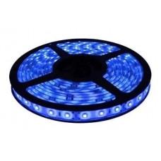 LED CINTA EXTERIOR AZUL 50/50 5MTS C/FUENTE 220V